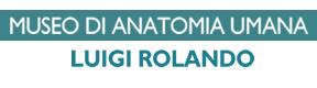 Museo di Anatomia Umana Luigi Rolando  - Università di Torino